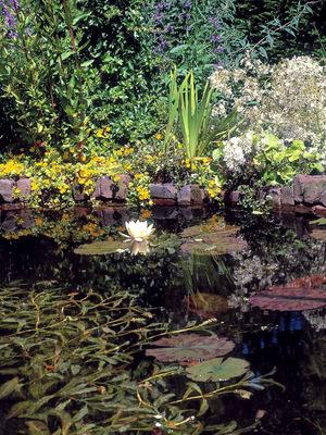 Kleine Gärten optisch vergrößern