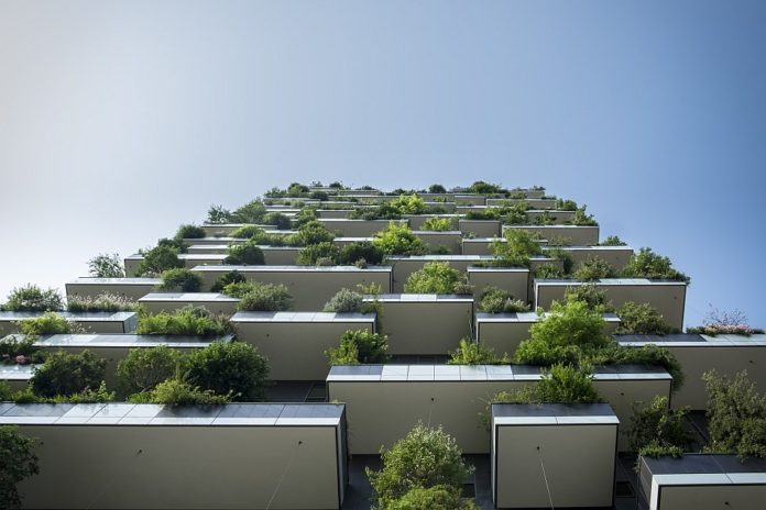 pflanzkübel balkon