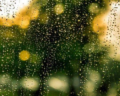 regenwasser wasserschaden